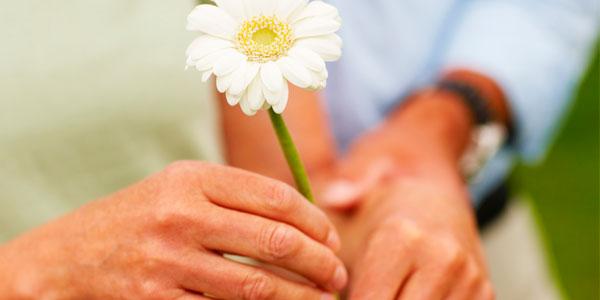 Hospice-Palliative-Medicine